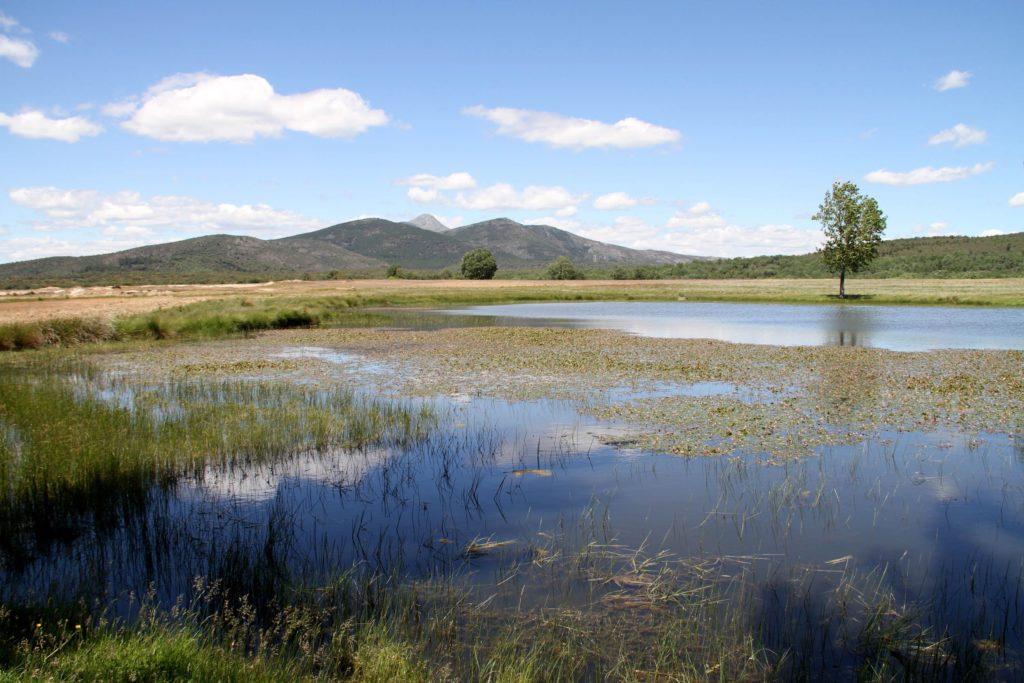 Foto de Sierra Norte de Guadalajara, pico Ocejón