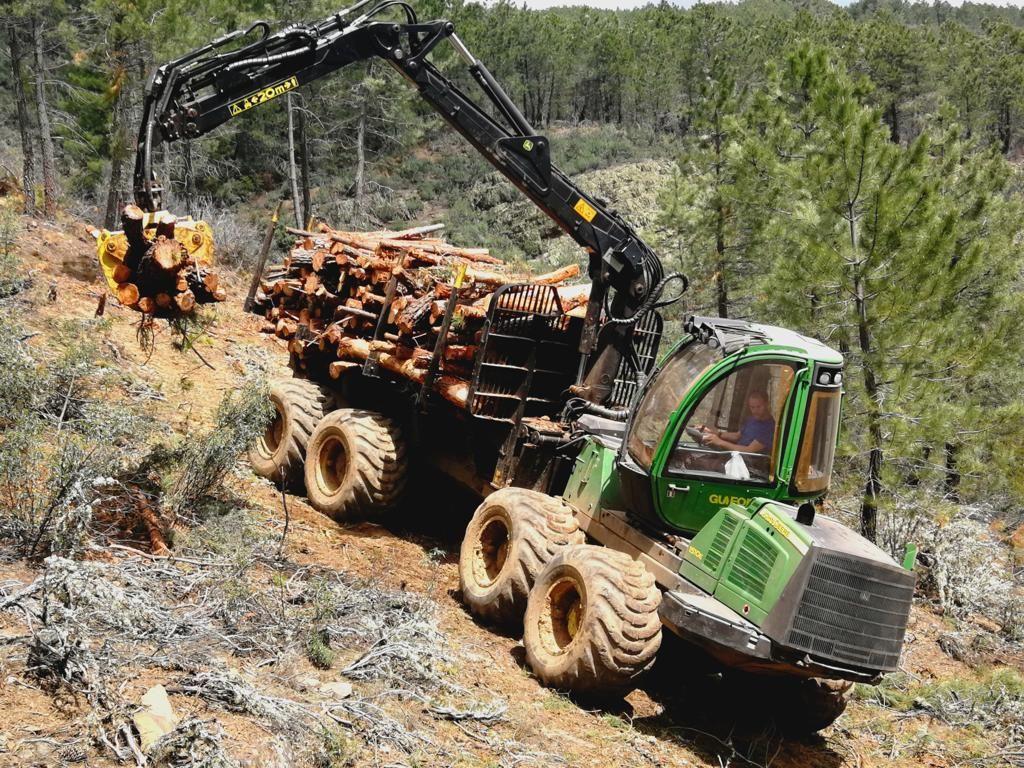 Foto de Leñas El Cardoso emplea a 10 trabajadores de la comarca de